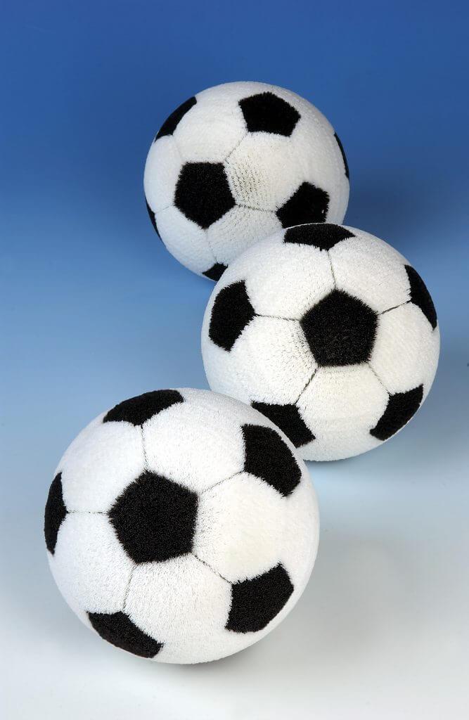 Nieblgin Bürsten Fußball